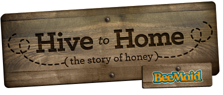 Hive to Home, the story of honey